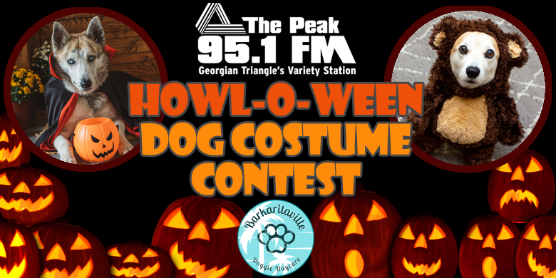 95.1 The Peak's Howl-O-Ween Costume Contest